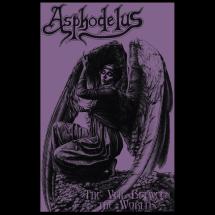 asphodelus cassette
